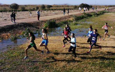 CdS cross country 2020 prima fase – il punto di Salvo Runner